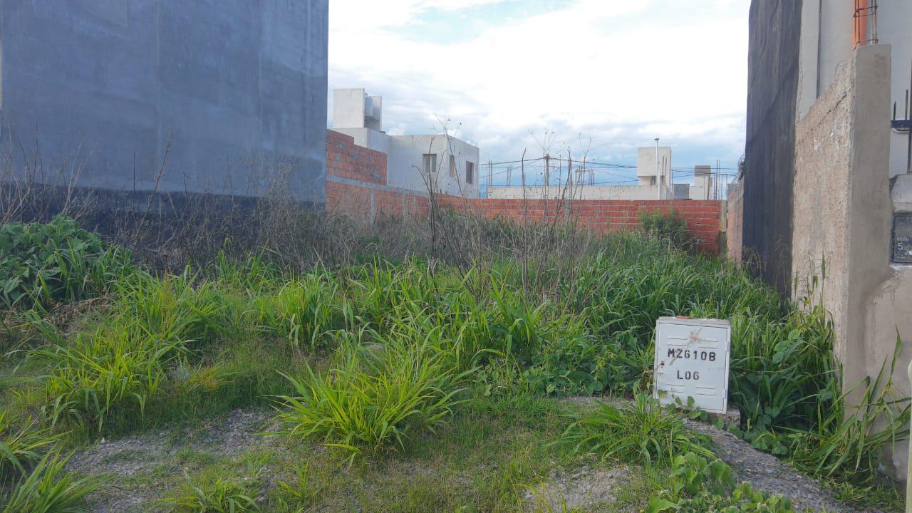 BARRIO PEREYRA ROZAS 006
